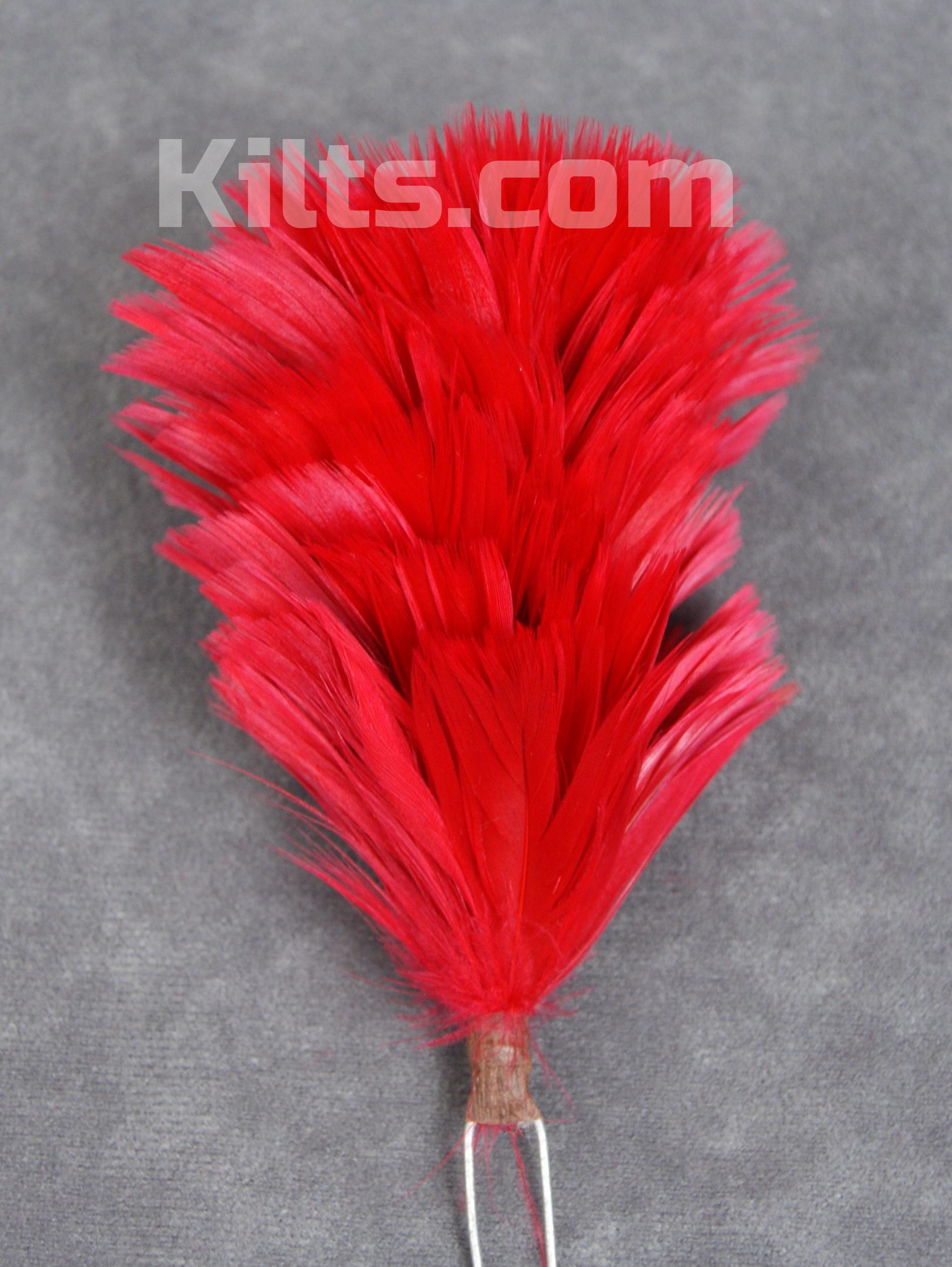 Check out our Glengarry and Balmoral Hat Feather Hackles